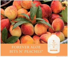 Prunus persica A beautiful blend of both peach and nectarine, you get the best of both delicious fruits. Smooth skin like a Nectarine but the flavour of a s Forever Living Shop, Forever Living Aloe Vera, Forever Aloe, Aloe Vera Juice Drink, Cocina Natural, Sources Of Vitamin A, Peach Juice, Fruity Drinks, Forever Living Products