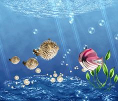 DesignByNettis: Under The Sea ☼ We are Swimming By, Just to Wish You All A Happy Weekend . Relax and load Your Batteries and don´t forget to Enjoy The Moment ☼ #3dart #artgif #designbynettis #fishes #bubbles #ocean #gifimages2016 #underthesea #keeponswimming #fish #gif  http://designbynettis.blogspot.se/2016/05/under-sea.html