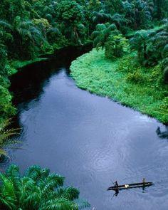 The Congo River, Angola Rio Congo, Congo Rainforest, Amazon Rainforest, African Rainforest, African Jungle, Afrique Francophone, Congo Brazzaville, Congo River, Congo Kinshasa