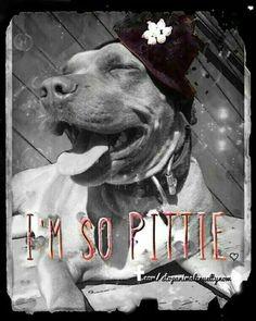 So pitty :) Beautiful Dogs, Animals Beautiful, Animals And Pets, Cute Animals, Pitbulls, Nanny Dog, Pit Bull Love, Fur Babies, Animal Babies