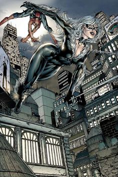 Spidey & The Black Cat by David Finch.