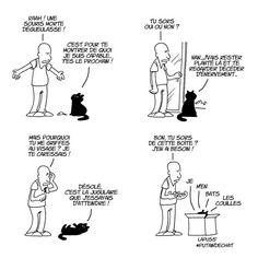 18 illustrations humoristiques qui prouvent (enfin) que les chats veulent notre malheur !