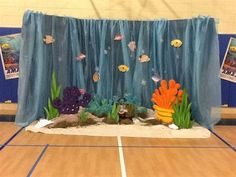 Coral reef - There is no coral in the Sea of Galilee.  But the background would work well in hallways
