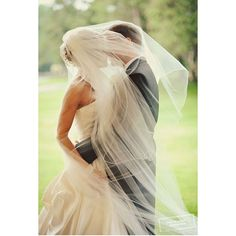 How romantic! A lightly veiled kissed for a wedding photo.