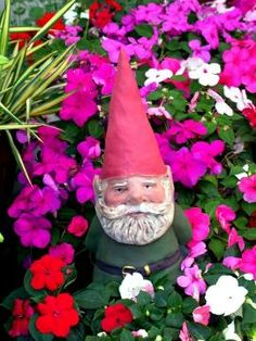 I love Impatients or busy Lizzie's and I think I need a cute gnome for my garden next year
