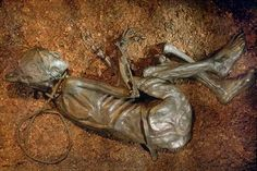 "Bog bodies. Personally I go with the whole ""no single explanation"" theory, but there are so many questions about who these people where, what happened to them, etc. Not to mention the entire mummification process is fascinating."