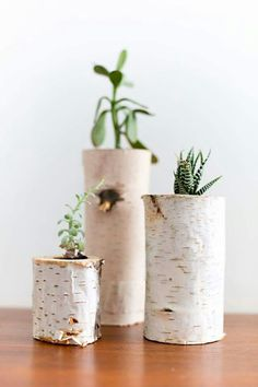 DIY! Boomstammetjes als bloempot