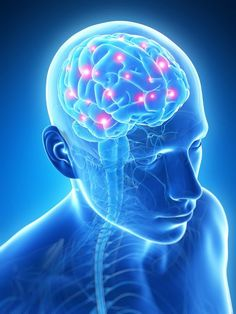 """Ein gutes Gedächtnis ist kein Zufall! Es gibt auch sehr alte Menschen mit einem sehr guten Gedächtnis! Nicht jeder Mensch wird im Alter vergesslich und auch du kannst etwas dafür tun, dass dein Gehirn bestens funktioniert. Wir stellen dir hier einige Lebensmittel und auch Tipps vor, mit denen du deinem Gehirn """"auf die Sprünge helfen kannst""""!"""