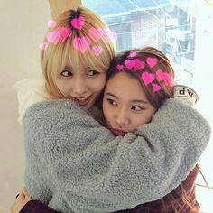TWICE - Chaeyoung & Momo