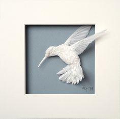 hummingbird 8 | Flickr - Photo Sharing!