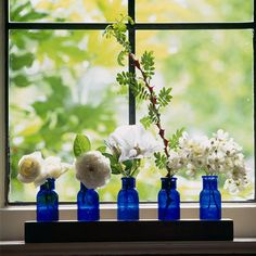 Colorful jars for windowsill gardens
