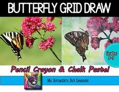 Students will learn about grid drawing and then will complete a butterfly grid drawing using both pencil crayon and chalk pastel in this ready to go and EASY to use, grid drawing product!