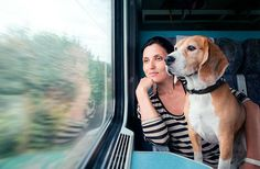Destination 7 Continents: How To Travel With Pets | Fodor's Travel