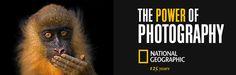 National Geographic 125 Anniversary