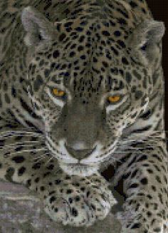 Leopard Cross Stitch pattern - PDF - Instant Download! by PenumbraCharts on Etsy