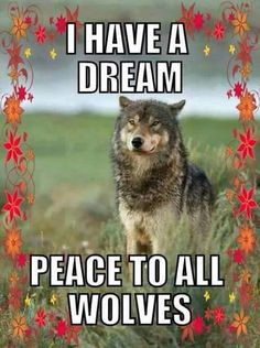 Love the wolves!