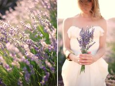 Lavender wedding.