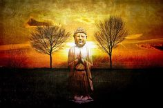 16 Ideas for Raising Your Consciousness | RiseEarth
