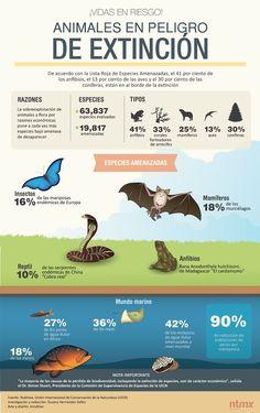Especies Peligro Extinción