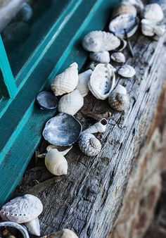 I like putting stones, small rocks, and shells on my windowsills. sweet photo.