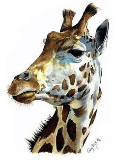 Жираф. Акварель. Реализм.