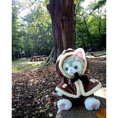 【puikun_gelatoni】さんのInstagramをピンしています。 《#チップとデール の衣装が #森 にとってもお似合いだよ #ジェラトーニ ※ ※ #円山公園 #北海道 #札幌 #ぬい撮り #ぬいぐるみと撮り隊 #gelatoni #ユニベアコスチューム #ユニベア #ユニベアシティ》