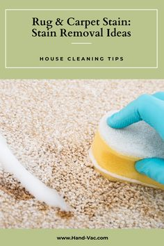 Stain removal tips for rugs and carpets will give you the info you need to get out many of your common stains. Check out the article. House Cleaning Tips, Cleaning Hacks, Carpets, Rugs On Carpet, Stain Remover Carpet, Removing Carpet, Carpet Stains, Clean House, Garden