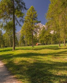 Un passaggio a livello talmente lungo che riesco a postare una foto con tutti gli hashtag. Parliamone.   Val Fiscalina Dolomiti di Sesto.   Dolomites we miss you.