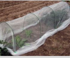 This is our above ground garden kit. it is only 3 metres long and 60cms tall. Portable and easy to manage for an above ground garden.