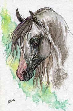 Piber polish arabian horse pen and watercolor painting by AngelHorses