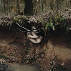 """Alex Stoddard-Earth. The concept of """"The nature of the womb"""" is what I love about this photograph. The fact that he found a way to show that Earth is our mother is genius."""