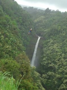 Zip-lining in oahu: wish I did this when I was there, well it's a reason to go back ;)