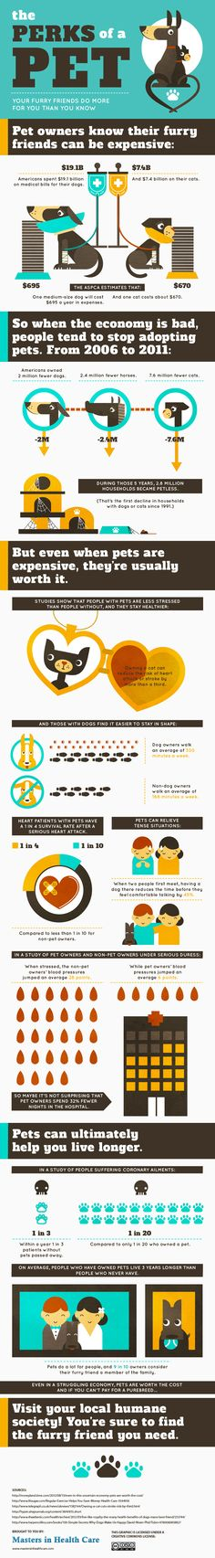 Perks of Pets Infographic