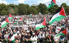 Gaza Rally in Hyde Park listening to the speeches