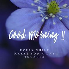 Are you searching for inspiration for good morning motivation?Check this out for unique good morning motivation ideas. These hilarious pictures will bring you joy. Good Morning Letter, Happy Good Morning Quotes, Good Morning For Him, Good Morning Motivation, Good Morning Handsome, Morning Quotes Images, Good Day Quotes, Good Morning Funny, Good Morning Inspirational Quotes
