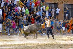 torodigital: Tarde taurina discreta en la población de Burrian...