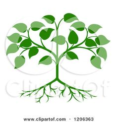 Clipart of a Green Seedling Tree with Leaves and Roots - Royalty ...