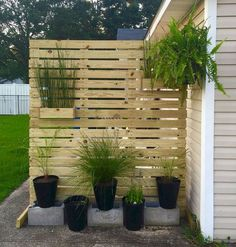 65 DIY Backyard Privacy Fence Design Ideas on a Budget 65 . - 65 DIY Backyard Privacy Fence Design Ideas on a Budget 65 DIY Backyard Privacy Fence - Diy Privacy Fence, Privacy Fence Designs, Privacy Screen Outdoor, Diy Fence, Backyard Fences, Backyard Landscaping, Landscaping Ideas, Pallet Fencing, Wood Fences