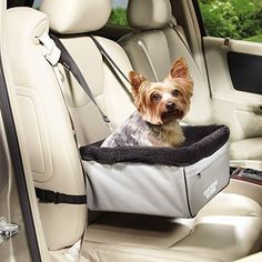 Guardian Gear Sightseer II Car Seats Practical For Dogs Small Slate Learn More