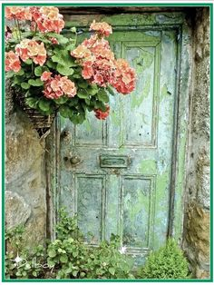 muted green door next to pretty pink flowers