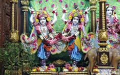 To view Gaura Nitai Wallpaper of ISKCON Chowpatty in difference sizes visit - http://harekrishnawallpapers.com/sri-sri-nitai-gaurachandra-wallpaper-001/