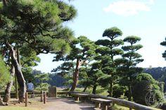 Oravankesäpesä: Japani 2013, Mito, Kairakue-en.