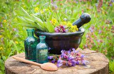 Rimedi Naturali: guide, articoli, speciali - Cure-Naturali.it