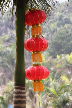 Chine Traditionnelle, Nanning #China #nanning #lanterns