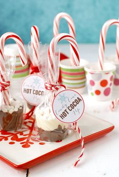 Candy Cane Hot Cocoa Pops: delicious to eat & a great gift! Candy Cane Hot Cocoa Pops are a fun recipe/DIY for parties and gifts. Homemade chocolate on a candy cane with tiny marshmallows are ready to melt in hot milk! Edible Christmas Gifts, Christmas Goodies, Homemade Christmas, Christmas Desserts, Christmas Treats, Christmas Baking, Candy Cane Christmas, Christmas Chocolates, Diy Xmas Gifts