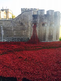 Blood Swept Lands and Seas of Red will see 888,246 ceramic poppies planted in the Tower's moat, each poppy representing a British military fatality during the war.