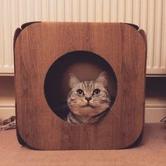 Oh wow! Ted is such a cutie  awww we are so pleased he likes his pod  thank you so much!  #cat #catsofinstagram #cats_of_instagram #catfurnature #catfurniture #catsinboxes #cattoy #INSTACAT_MEOWS #cutecat #PurrMachine #catsinboxes #catbox #Excellent_Cats #BestMeow #dailykittymail #thecatniptimes #catcube #catpod #ArchNemesis #FlyingArchNemesis #myindoorpaws #ififitsisits #cutecatcrew #catchalet #catnip #themeowdaily #kitty #catpyramid #miuandmaosfurriends