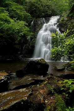 Spruce Flatt Falls - Smoky Mountains, Tennessee ‎#waterfall #tennessee