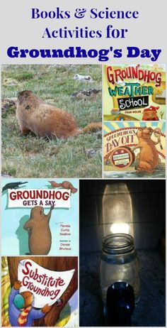 10 Books and Science activities perfect for Groundhog's Day!  Light, shadow and weather experiments for kids