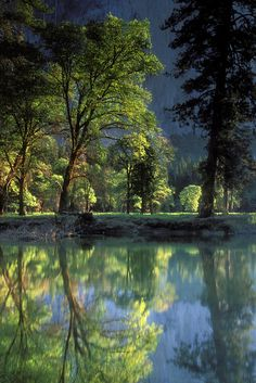 Yosemite Morning Reflection Photograph  - Yosemite Morning Reflection Fine Art Print